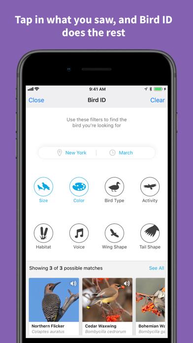 Screenshot for Audubon Bird Guide in United States App Store