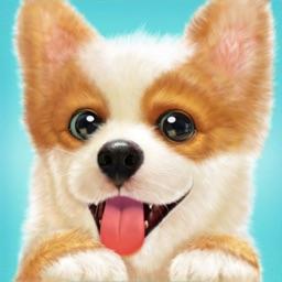 Pocket Puppy™