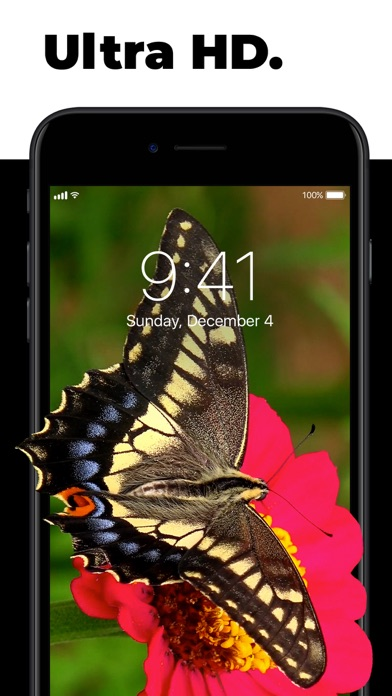 Download Live Wallpapers for Me for Pc