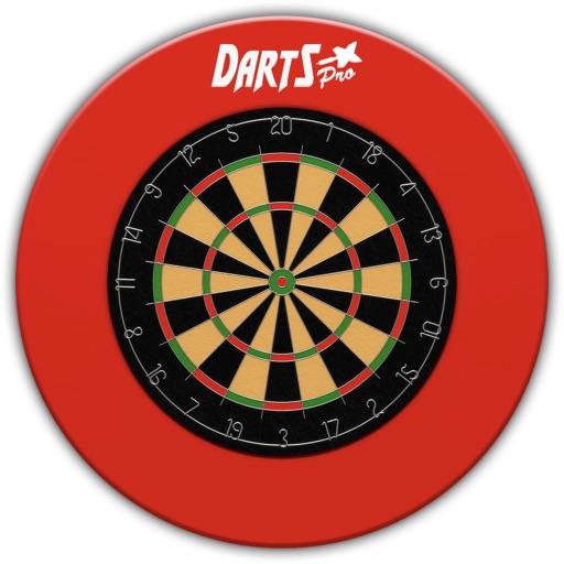 Darts Professional