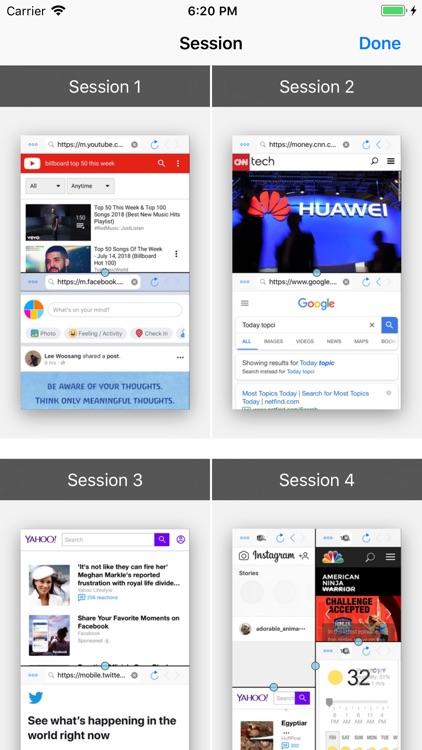 Split Screen: MultiTasking Web screenshot-7
