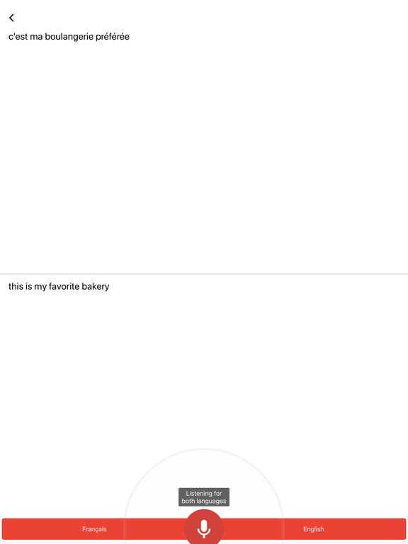 Google Translate-ipad-2