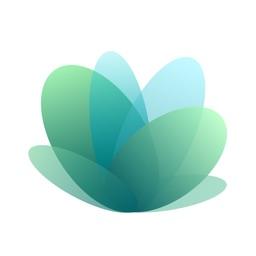 Plant Identifier - Leaf Snap
