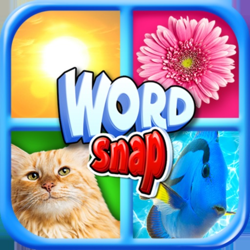 Word Snap - Brain Pic Games