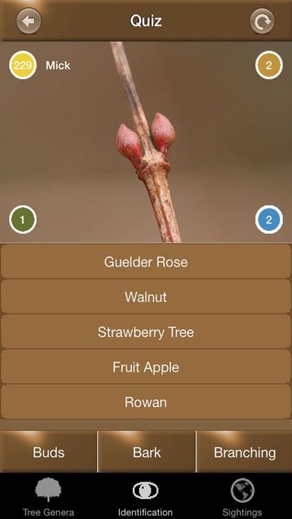 Winter Tree Id - British Isles screenshot-3
