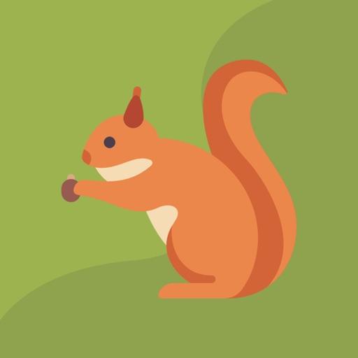 Chipmunk - Your Budget Friend