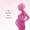 Eagle Teng Information Co., LTD - Pregnancy Music Collections  artwork