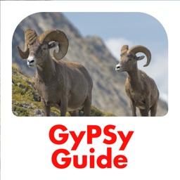 Jasper National Park GyPSy
