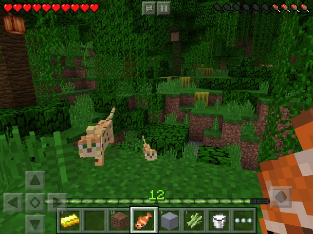 how to make it day in minecraft on ipad