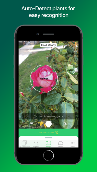 PlantSnap Pro: Identify Plants at AppGhost com