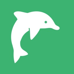 Dolphin English Flashcard