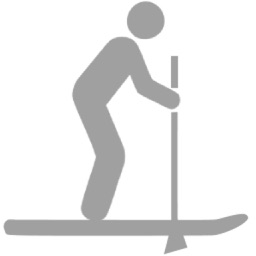 SUP - Paddle Boarding