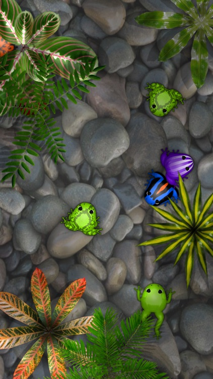 Pocket Frogs screenshot-0