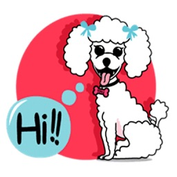 Cute White Poodle Dog Sticker