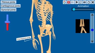 Joints: The Human Levers screenshot 5