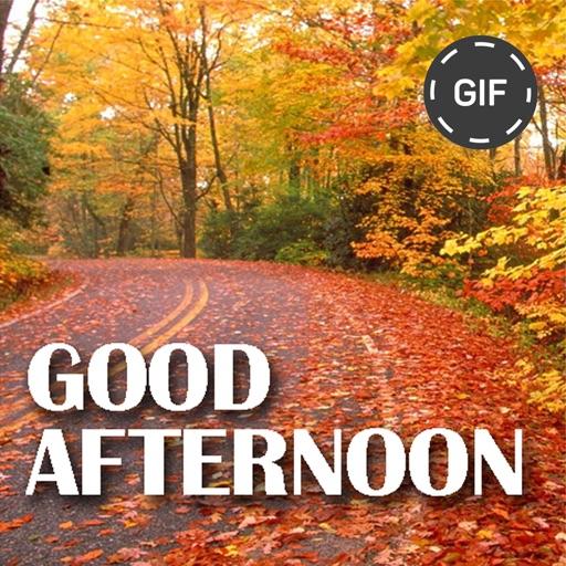 Good Afternoon Gif