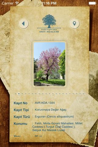 Anıt Ağaçlar - Avrupa - náhled