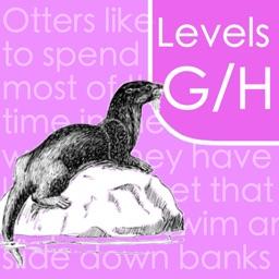 Reading Comprehension: G/H