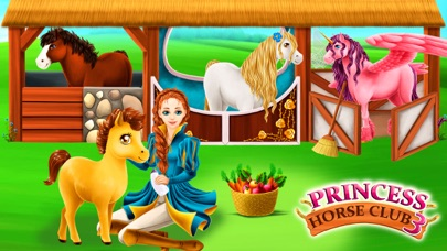 Princess Horse Club 3 screenshot one