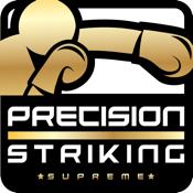 Precision Boxing Coach Pro icon