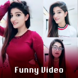 Best Funny Videos Collection