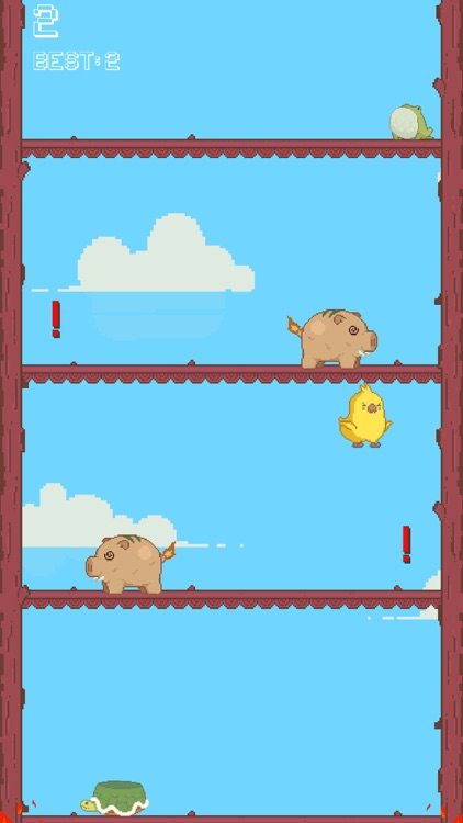 Go Parrot!
