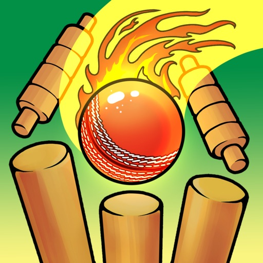 Real Cricket Bowling Practice