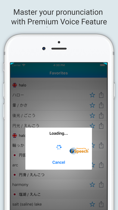 English-Japanese Dictionary + screenshot 4