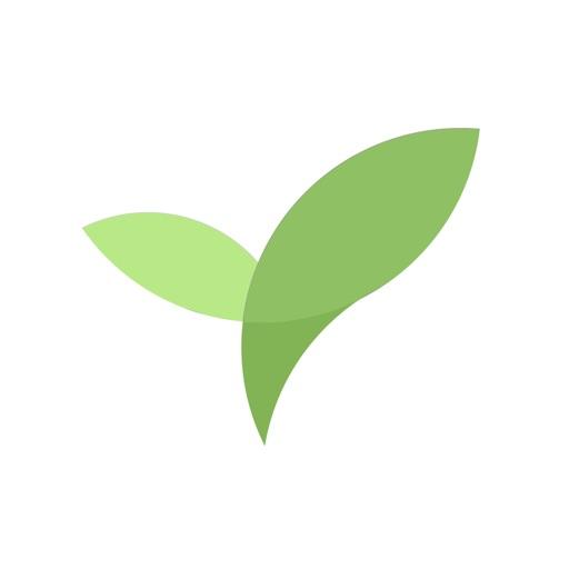Plantie - сосредоточиться