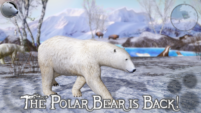 Polar Bear Simulator 2 Screenshot