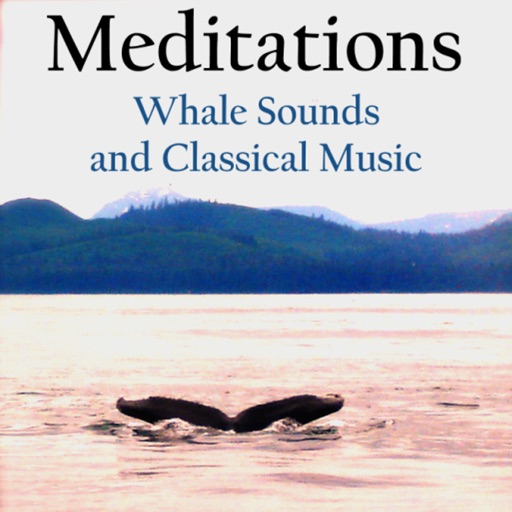 Meditations - Whales and Music