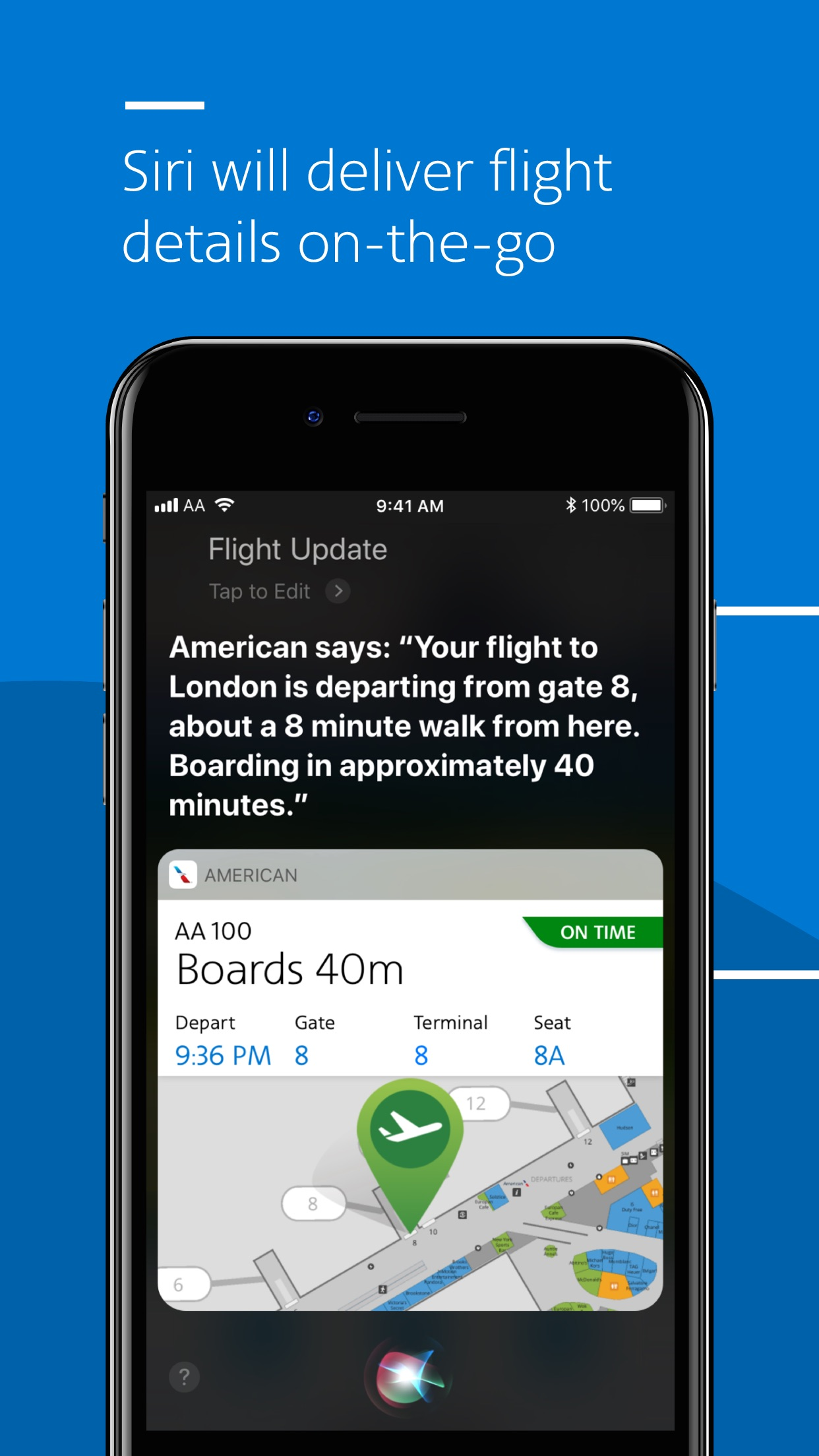 American Airlines Screenshot