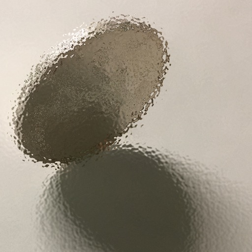 Magical Coin Flip
