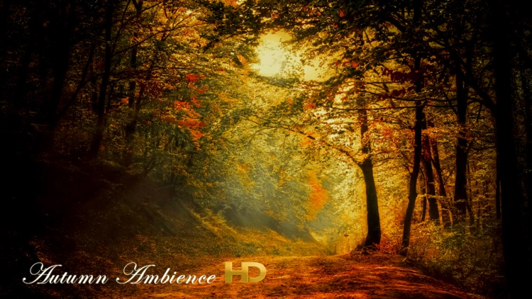 Autumn Ambience HD screenshot-0