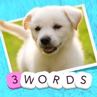 Codes for 3 Words: Cute Animals – a word game based on cuddly animal pictures Hack