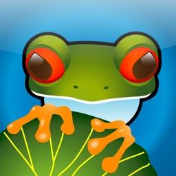 Jumpy Frogs