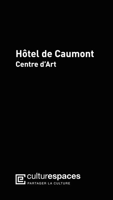 Screenshot #1 pour Hôtel de Caumont-Centre d'Art