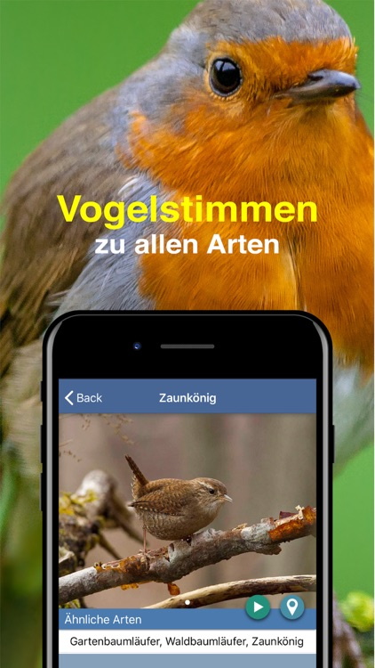 Bird Id - Garden Birds Germany screenshot-5