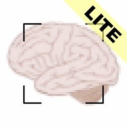 ML Image Identifier Lite