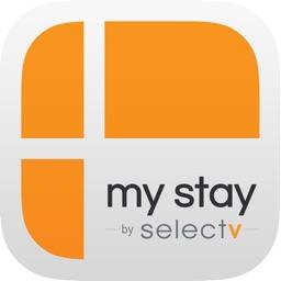 My-Stay