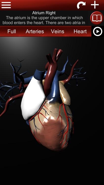 Circulatory System 3D Anatomy screenshot-3