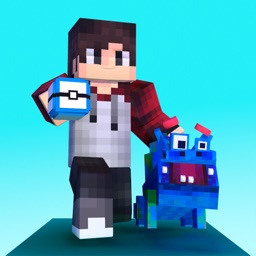 Pixelmon craft: build block