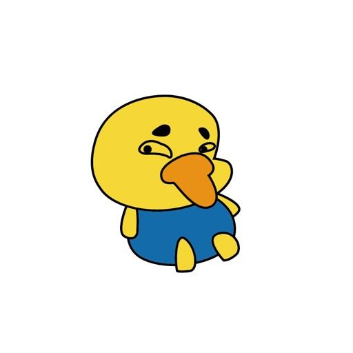 肥肥傲娇鸭
