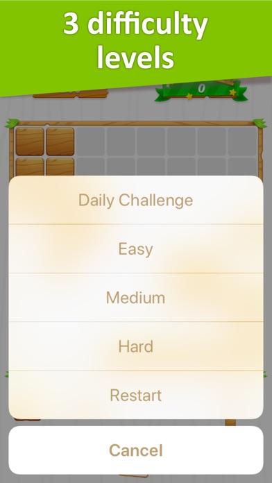 Block Puzzle - classic bricks screenshot 2