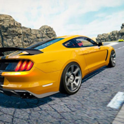 Car Pro: Street RC