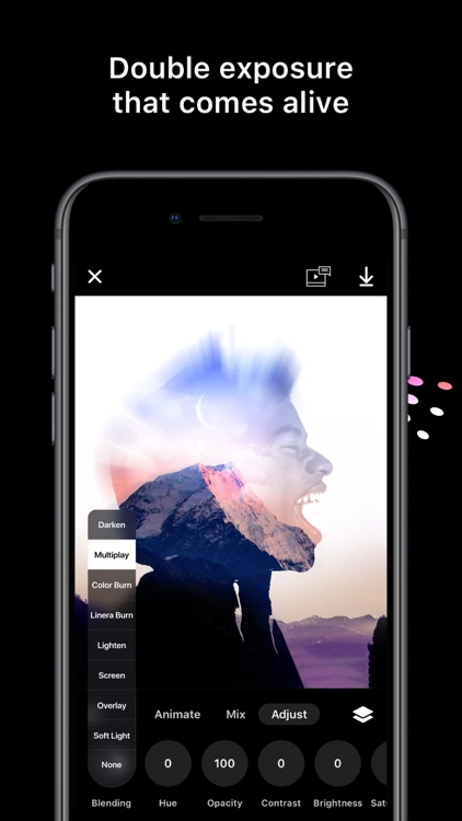 Disflow - Motion Photo Editor