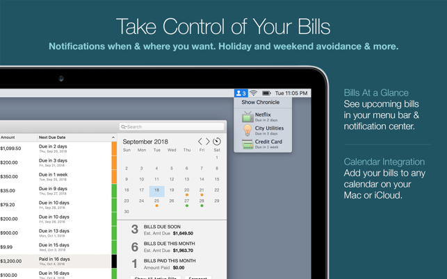 ‎Chronicle Pro - Bills & Income Screenshot