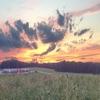日没の写真