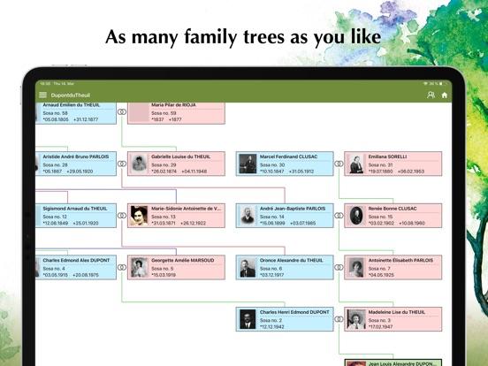 Family Tree Explorer Viewer screenshot 11