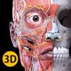 解剖学 - 3Dアトラス - iPhoneアプリ